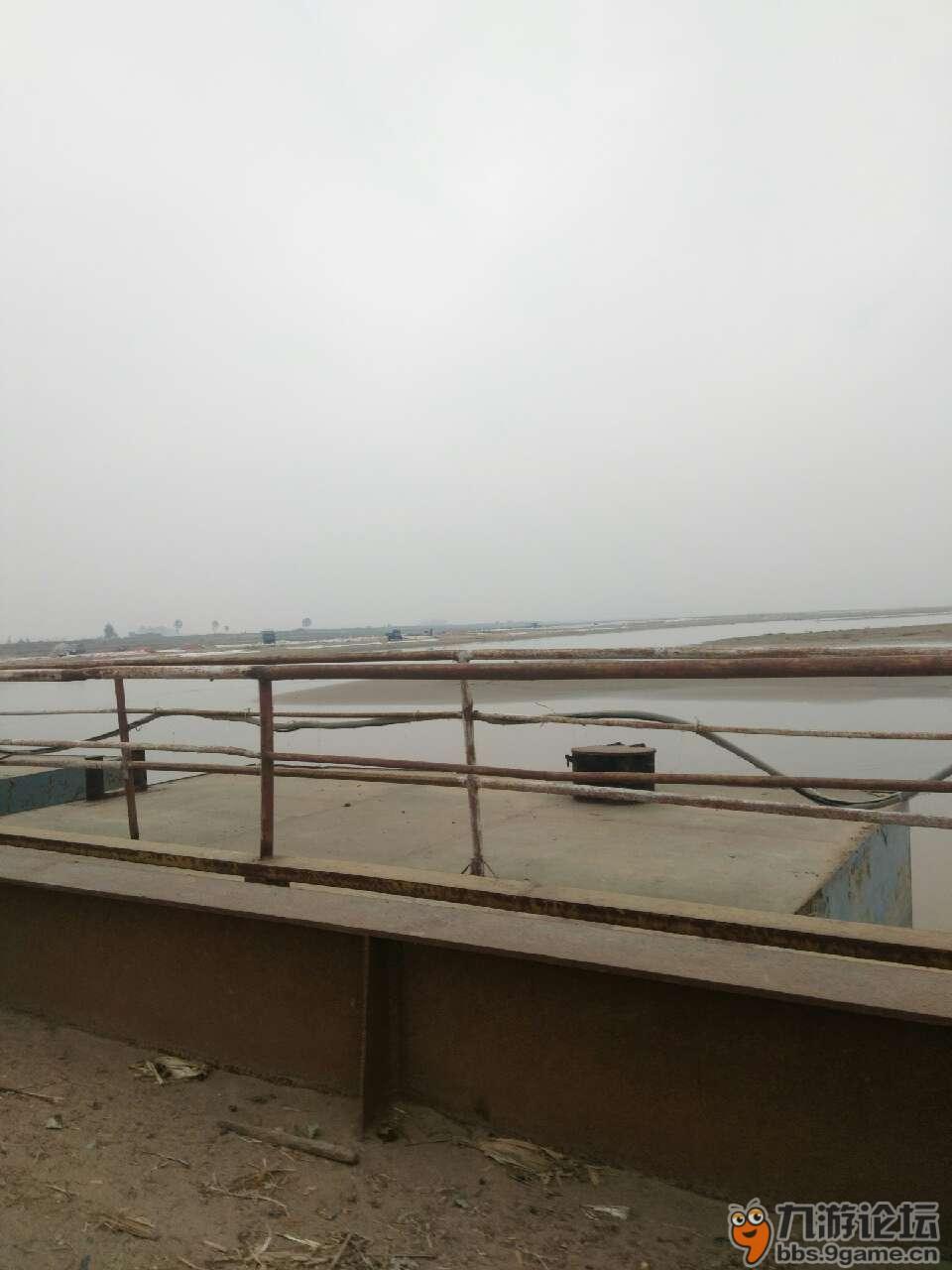 兰考黄河滩风景区