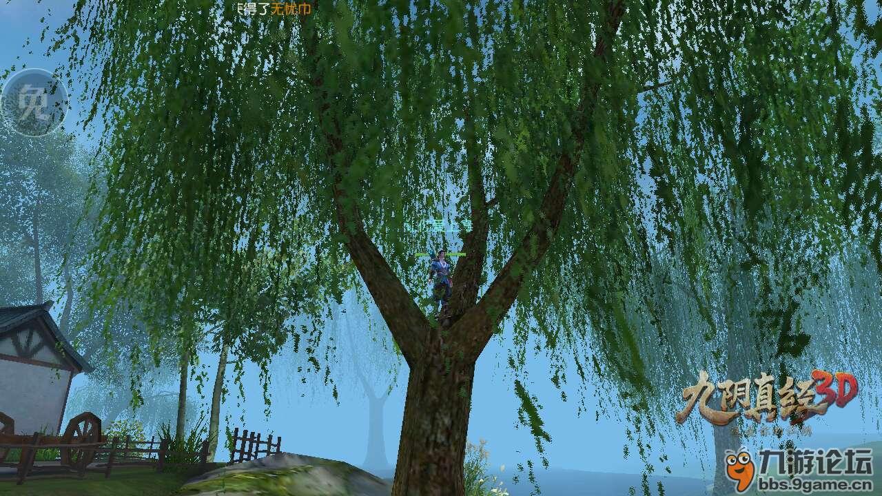柳树风景近图美女图片