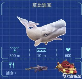 鲨鱼图鉴2